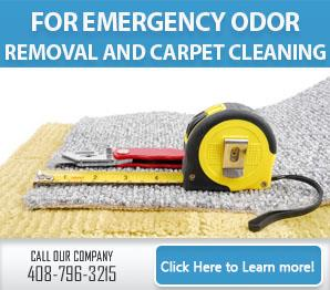 Carpet Cleaning Santa Clara, CA | 408-796-3215 | Steam Clean